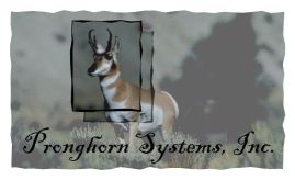 Pronghorn Systems, Inc.